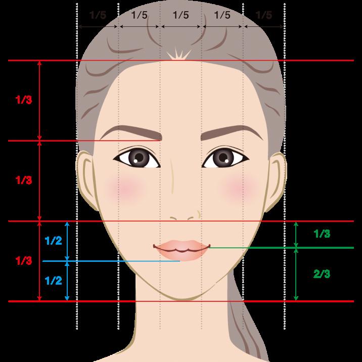 顔の黄金比の図